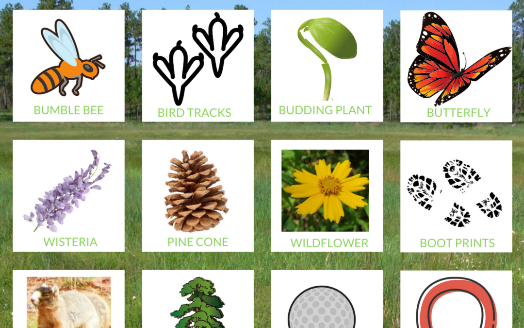 Leopold Society Nature Bingo!